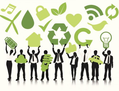 On the Pulse: Plant Organization – The Importance of an Environmentally Friendly Business